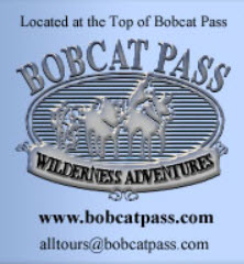 BobCat Pass Red River, NM